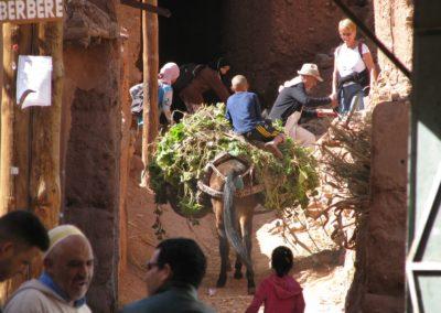 Stage aquarelle et carnet de voyage au Maroc avec François Beaumont